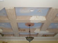 MR Birds ceiling Mural